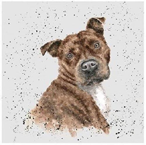 Wrendale Designs Scrumpy the Staffy Dog Blank Inside Greetings Card 15x15cm